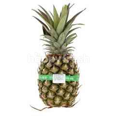 Eat Fresh Sarawak Pineapple