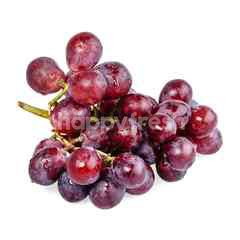FreshBox USA Red Grapes