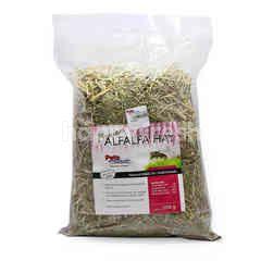Timothy Hay Alfalfa For Small Animals