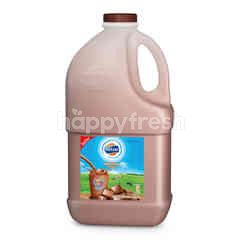 Foremost Pasteurized Milk Chocolate Flavour With High Calcium 2 L