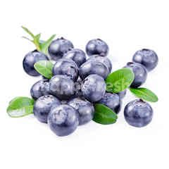 Driscoll's Imported Blueberries