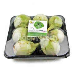 Wb Organic Thai Eggplant