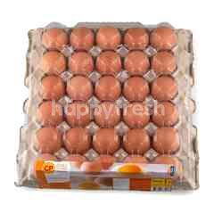 ซีพี ไข่ไก่สสดอนามัย
