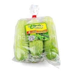 PPK Organic Cucumber
