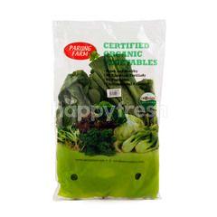 Parung Farm Organic Caisim