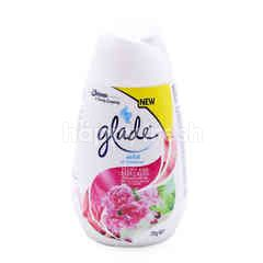 Glade Peony And Berry Bliss Scented Solid Air Freshener