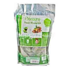 Verdure Frozen Wheatgrass