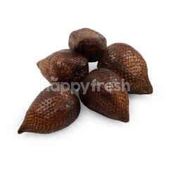 Pondoh Super Snakefruit