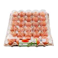 Tesco Fresh Eggs Size M 30 Pcs