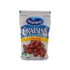 Ocean Spray Craisins Dried Cranberries Original