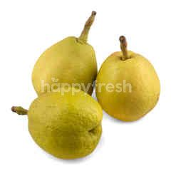 Gourmet Market Fragrance Pears