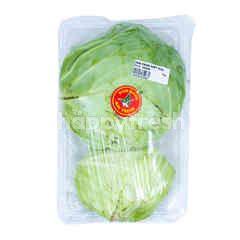 WIN Fresh Baby Chinese Cabbage
