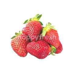 New Zealand Strawberry