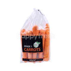 Green Fresh China Carrots 500G