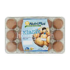 Nutriplus Classic Eggs (15 Pieces)