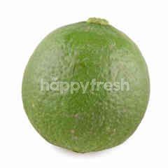 Big C Lime Jumbo