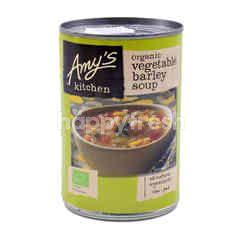 Amy's Kitchen Organic Vegetable Barley Soup