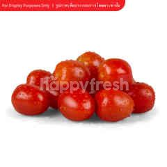 Natural & Premium Food Organic Cherry Tomato