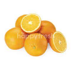 Garden Basket Navel Orange (8 Pieces)
