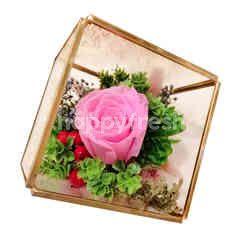 Garden Scents Preserve Real Rose Everlasting