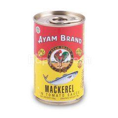Ayam Brand Tomato Sauce Mackerel