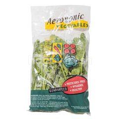 Amazing Farm Aeroponik Horenso