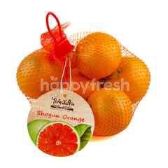 Rai Kamnanjul Shogun Orange