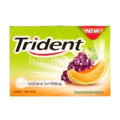 Trident Melon Grape Gum
