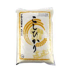 Koshihikari Japanese Rice