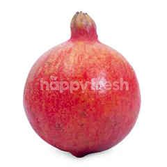 India Pomegranate