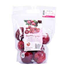ATP Fruit Sweet Cherry Apple