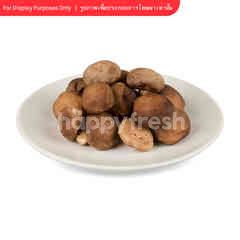 Tesco Shiitake Mushrooms