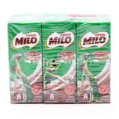 Milo Chocolate Malt Drink