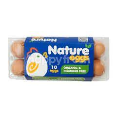 Nature Eggs Telur Organik & Bebas Cangkang