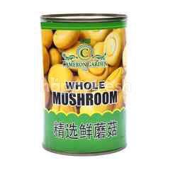 Cameron Garden Whole Mushroom