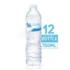 สิงห์ น้ำดื่ม ขวด 750 มล. (แพ็ค)