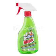 Mr Muscle Windex Glass Cleaner Apple Aroma