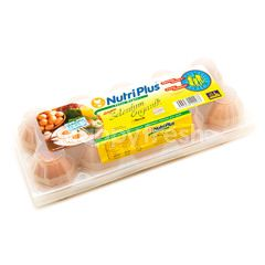 Nutriplus Fresh Eggs Selenium Organic