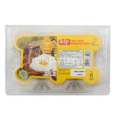 Kip Telur Ayam Kampung Super