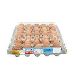 SUNNYSIDE Omega-3 Eggs