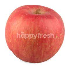 SK Fuji Apple 1 Each