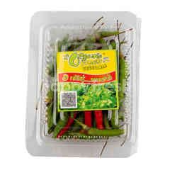 PPK Organic Chilli