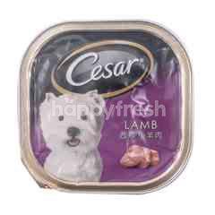 Cesar Lamb Flavoured Dog Food