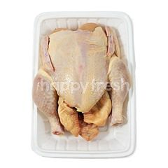 Natural Poultry Whole Probiotic Chicken (~0.719kg)