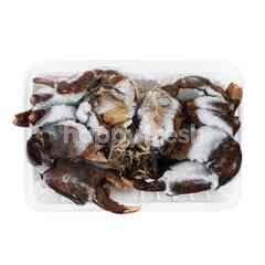 Kepiting Jantan Jumbo
