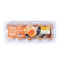 Super Indo 365 Omega 9 Chicken Egg