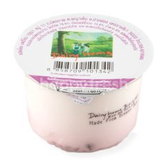 Dairy Home Yogurt With Mulberry