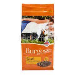 Burgess Makanan Marmot Nuget dengan Mint