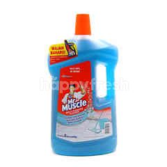 Mr Muscle Multipurpose Cleaner