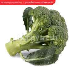 Tesco Broccoli